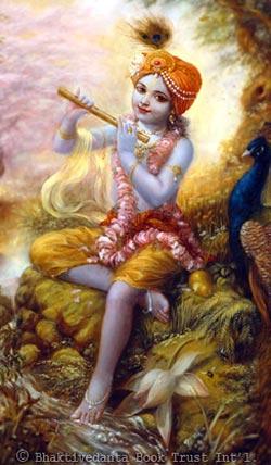 About Krishna